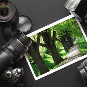 Фотоуслуги Зеленогорска